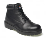 Dickies Antrim S1P SRA Safety Boot (Sizes 4 - 13)